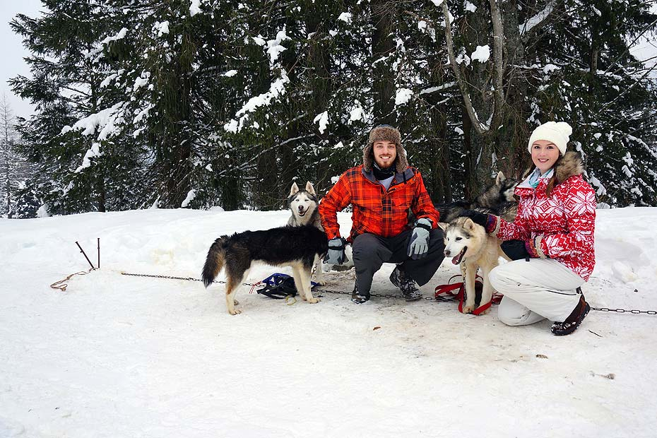 Huskies tours in Chamonix
