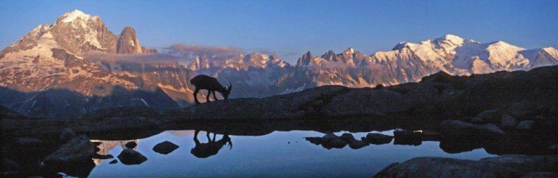 points de vue de Chamonix