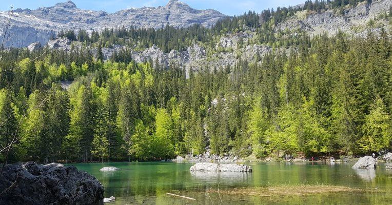 lac-vert Chamonix mums